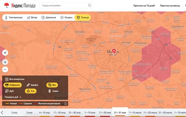 Яндекс представил карту пыльцы для аллергиков в Беларуси
