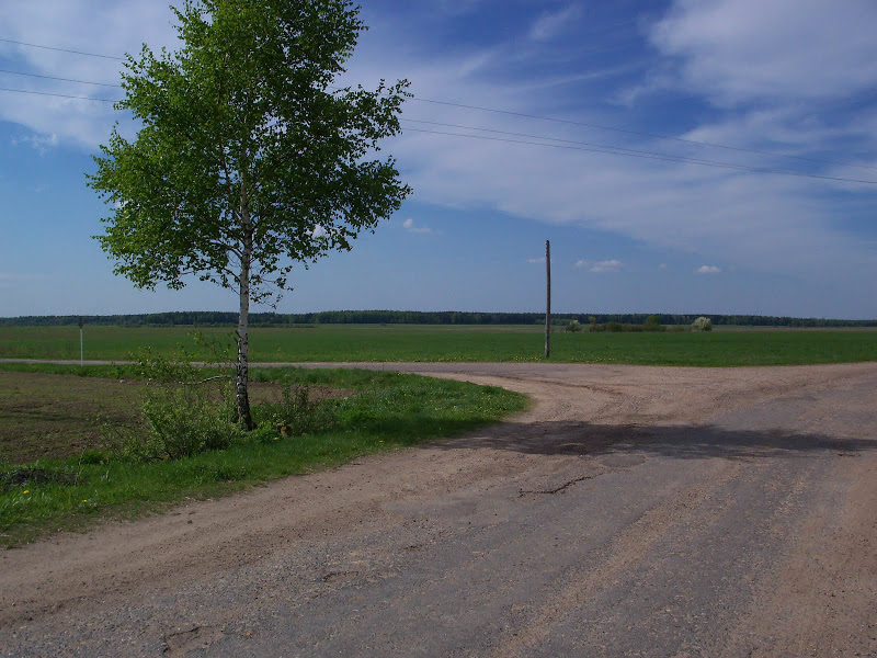 К 2020 году местные дороги Беларуси приведут в порядок