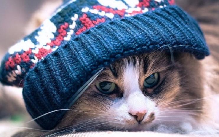 В Беларуси на выходные похолодает