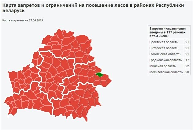 В 117 районах Беларуси запрещено посещение лесов