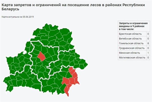 В Беларуси снова начинают запрещать посещение лесов