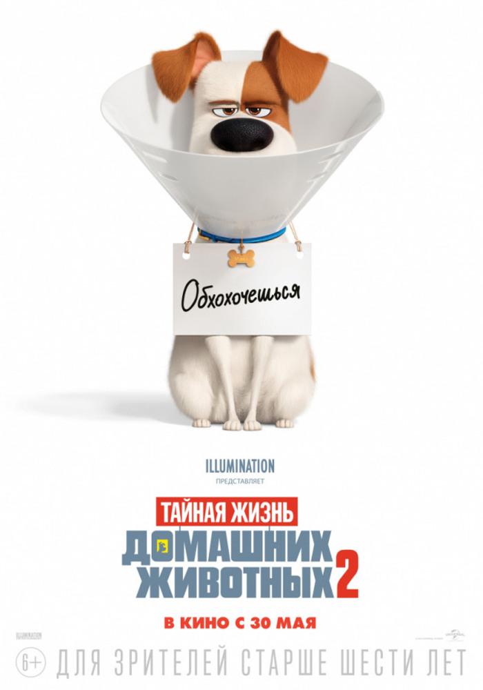 "Афиша кинотеатра ""Юбилейный"" c 06 июня 2019 года"