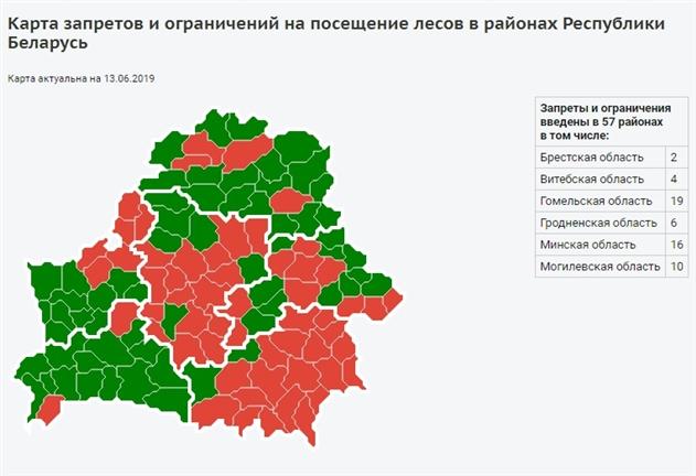 В Беларуси вновь введен запрет на посещение лесов в 57 районах