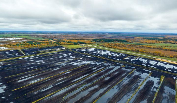 В Лидском районе восстановят один из самых больших торфяников в Беларуси
