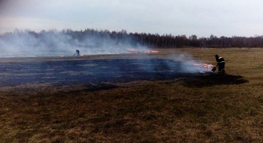 В Лидском районе сгорел гектар травы