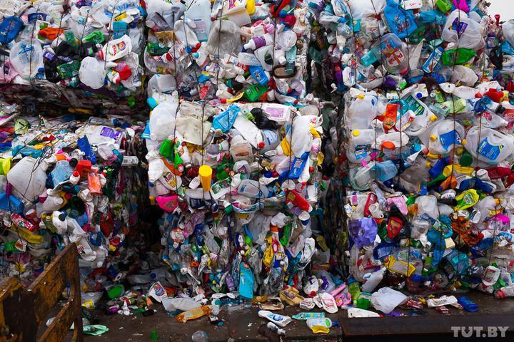В Беларуси сортировка мусора с сегодняшнего дня стала обязательной