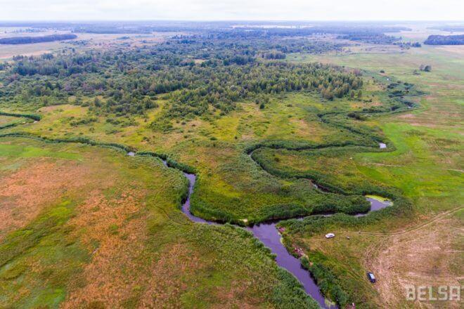 Недалеко от Лиды Дитва разливается на два больших ручья, которые создают пойму с островами, на которых сегодня живут многие дикие животные. Фото – Василий Молчанов/Белсат